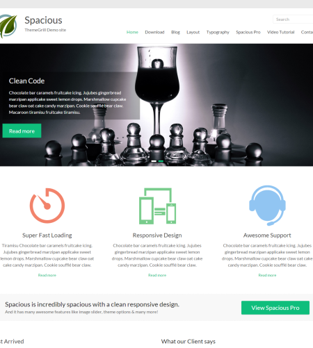 Clean WordPress Website Design Theme